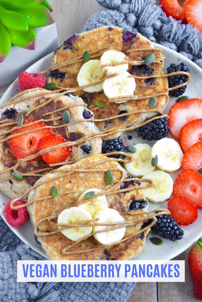 vegan blueberry pancakes- veggie world recipes