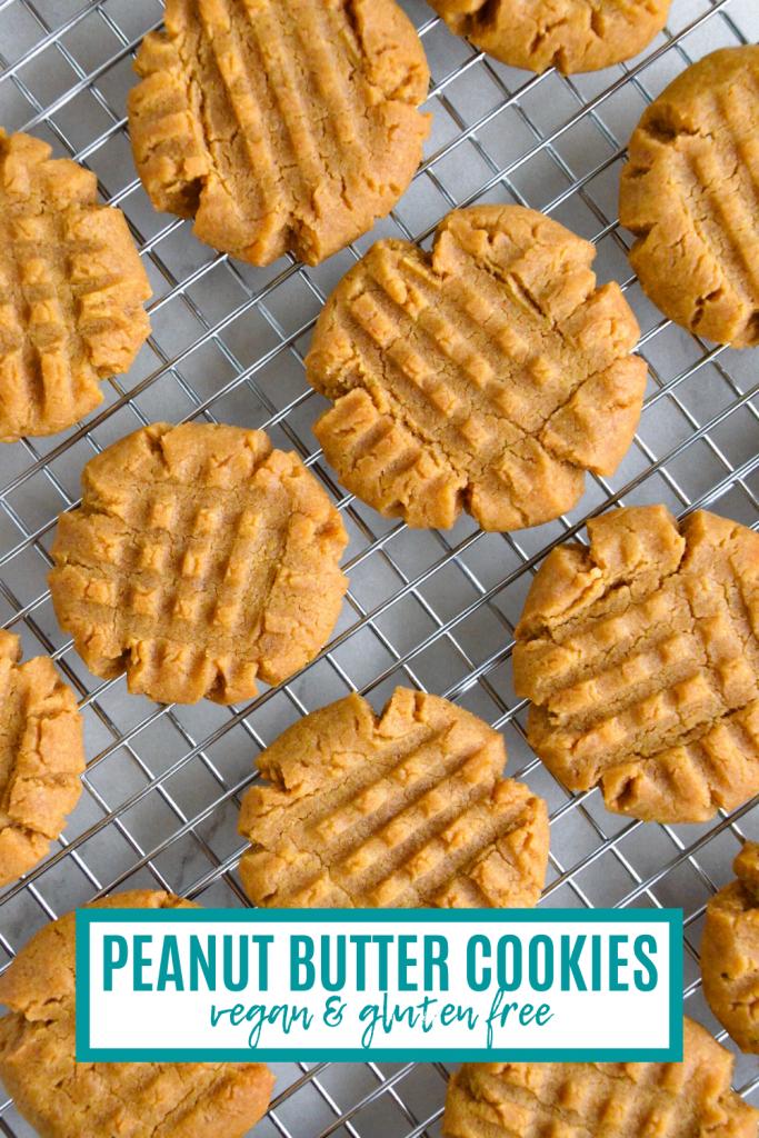 vegan peanut butter cookies- veggie world recipes